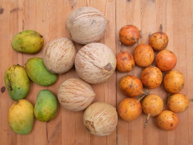 Lieferung_Passion4fruit_Mangos_Grenadillen_Kokosnuesse