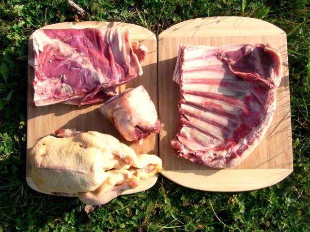Fleischlieferung_Orkos_Ente_Lamm