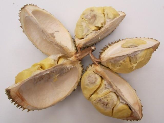 Durian_Gan_Yau_Fruchttaschen