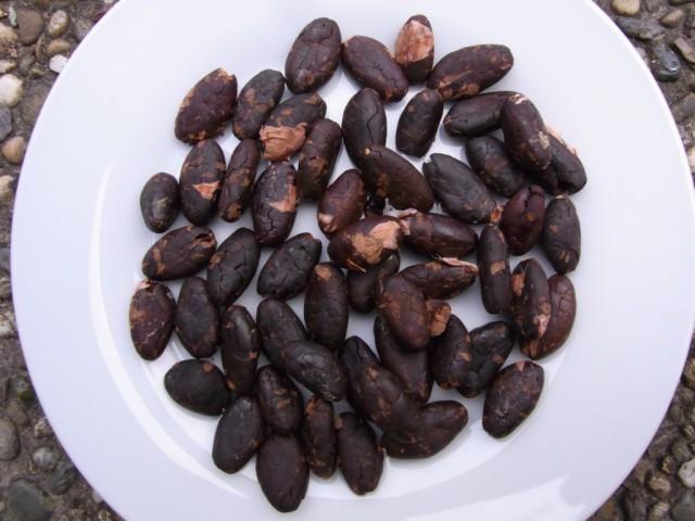 Kakao_Bohnen