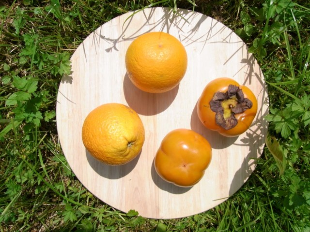 Apfelsinen_und_Sharonfruechte