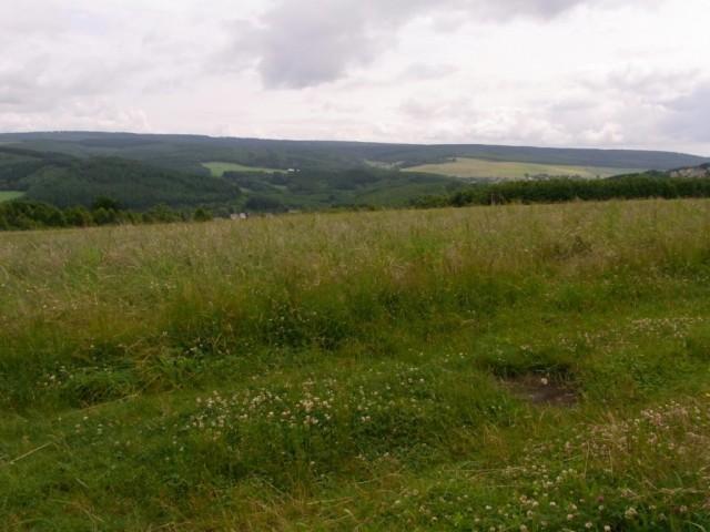 Panoramaaussicht_Schwarzwaelder_Hochwald