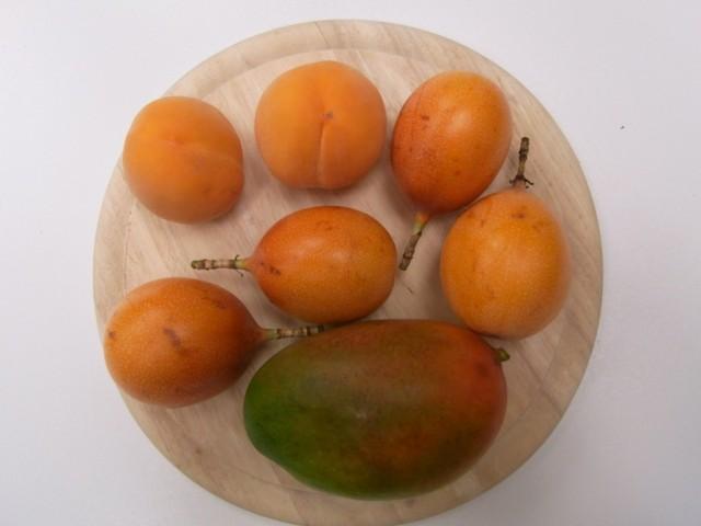 Grenadillen_Mango_Pfirsiche
