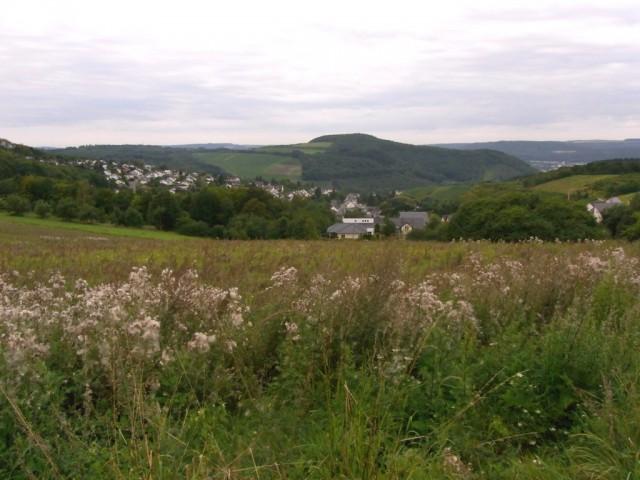 Blick_auf_Mertesdorf