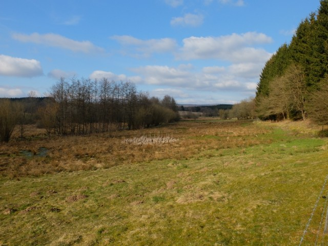 Landschaft_Fruehling