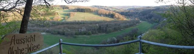 Panorama_Nahe_Wiese