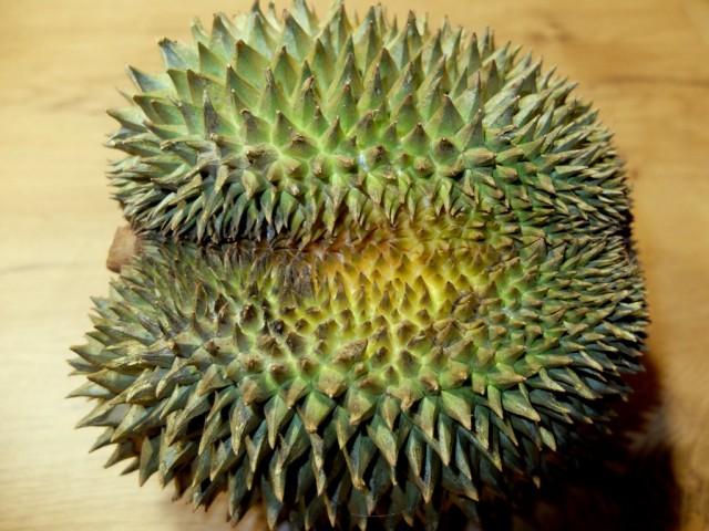 Durian_Kanyao