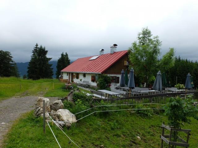 Horn_Alpe