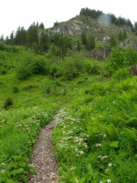 Hornbahn_Aufstieg_3