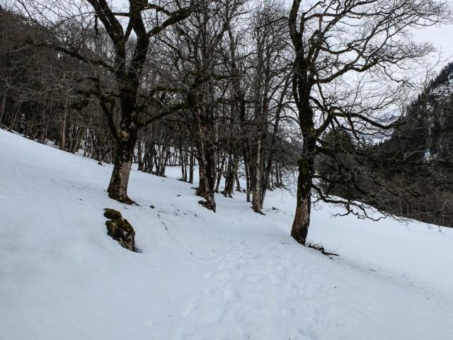 Winterwanderung_Dietersbachtal