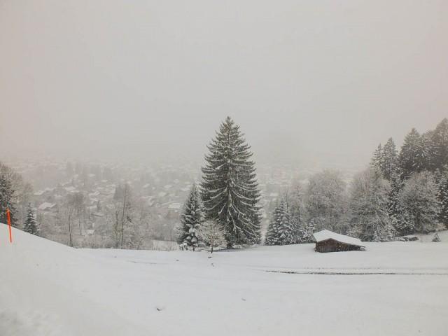 Breitenberg_Blick_Auf_Oberstdorf