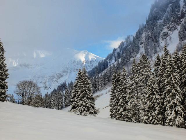 Dietersbachtal_im_Winter_2