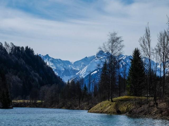 Auwaldsee_1