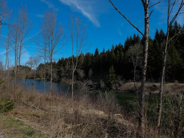 Auwaldsee_2