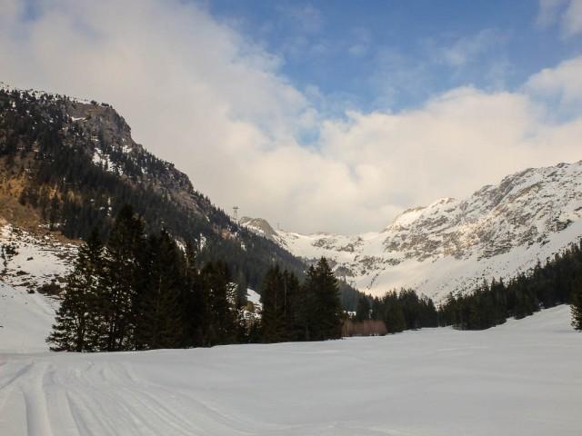 Seealpe_Blick_zum_Nebelhorn