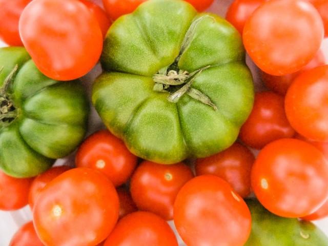 Tomaten_rot_und_gruen