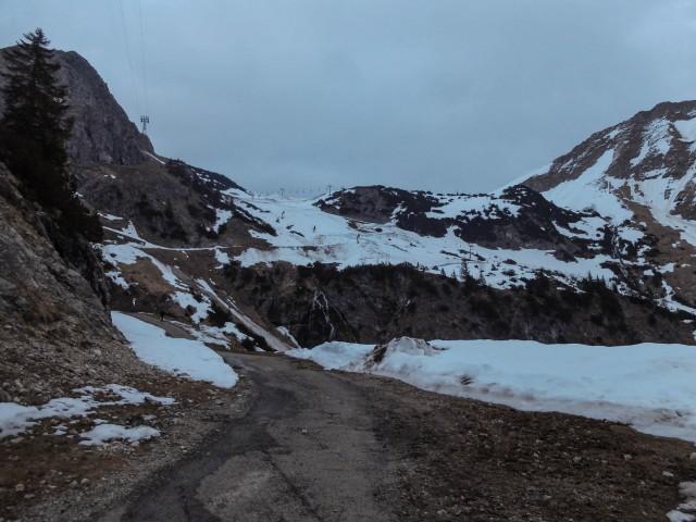 Nebelhorngebiet_im_April