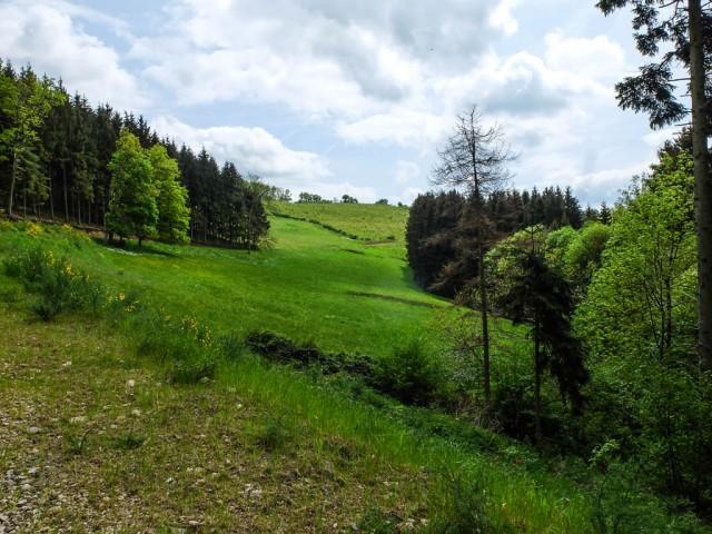 Eifel_Landschaft_1