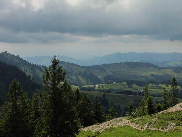 Blick_auf_Bodensee