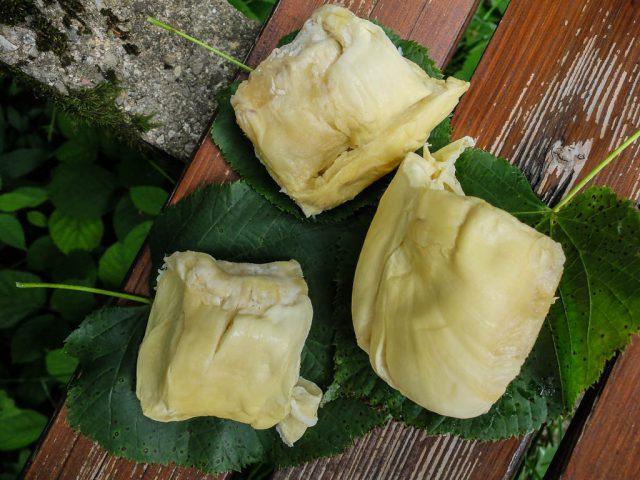Durian_auf_Lindenblaettern