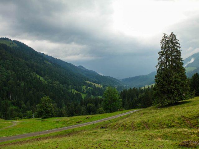 Hochgrat_Abstieg_3