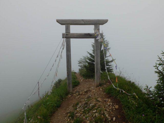 Porta_Alpinae