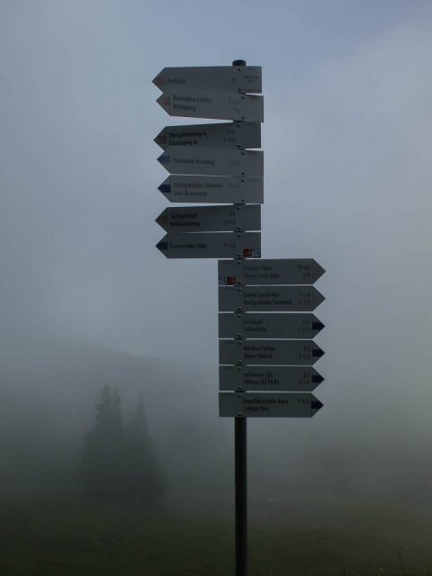 Wegweiser_im_Nebel