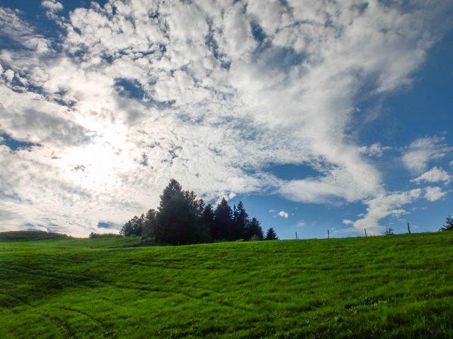 Wiese_und_Wolken