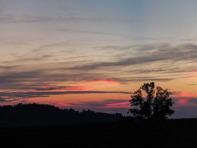 Abendhimmel_mit_Baum