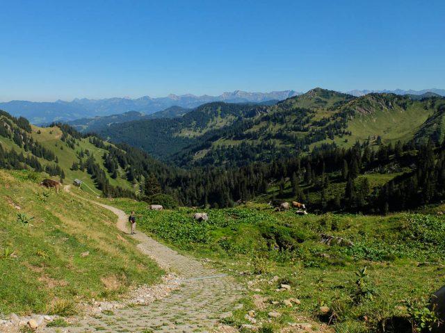 Hochgrat_Wanderweg