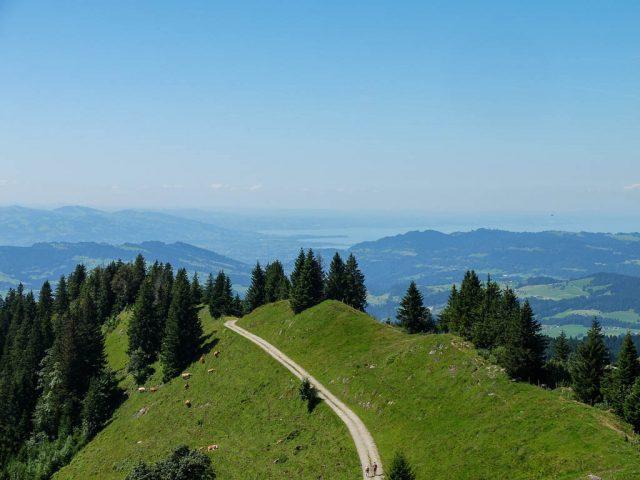 Hoher_Haederich_Blick_auf_den_Bodensee