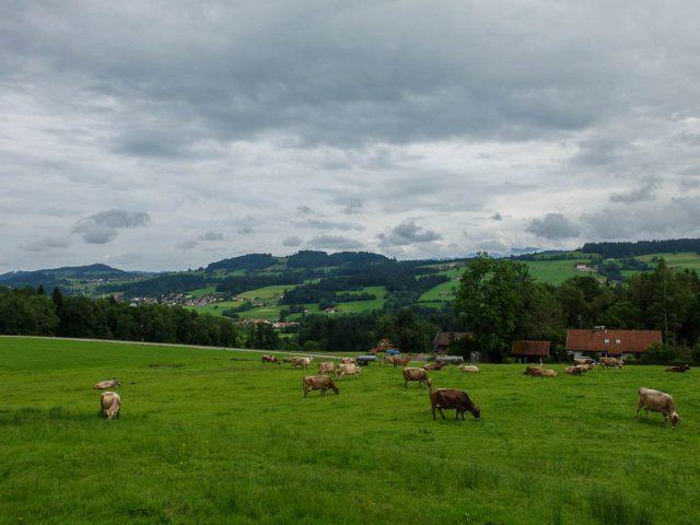 Landkreis_Lindau_2