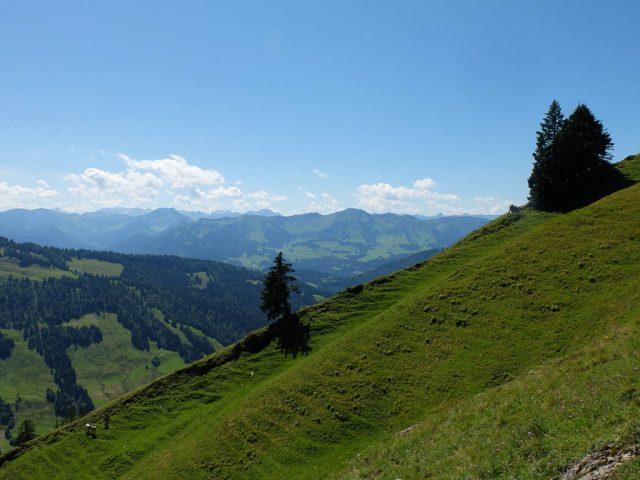 Panorama_Seelekopf_2