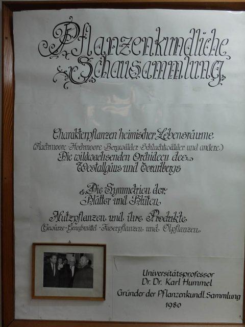 Plakat_Schausammlung