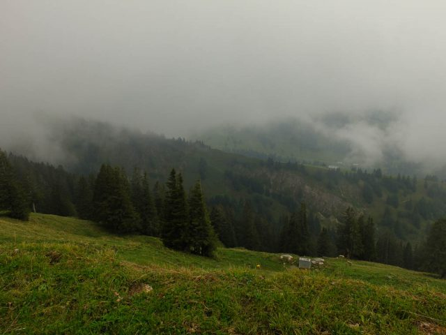 hochgrat_in_den_wolken