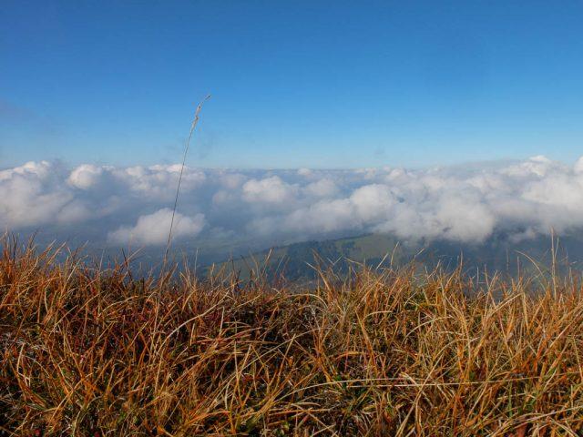 hochgrat_gras_und_wolken