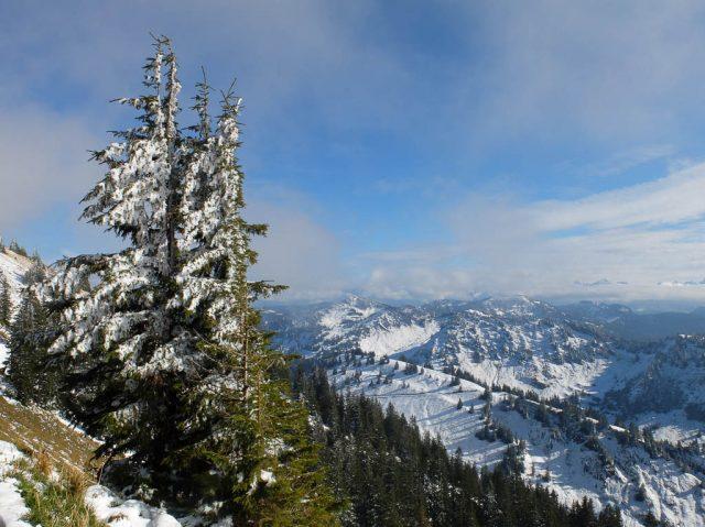 hochgrat_panorama_winter_2