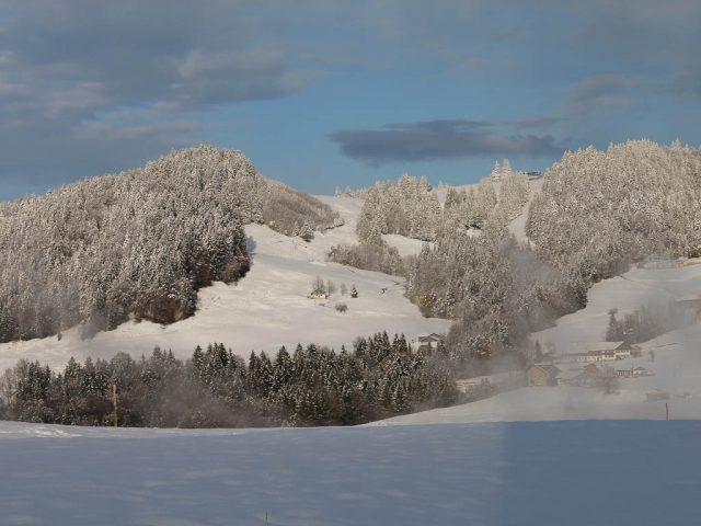 huendle_im_winter