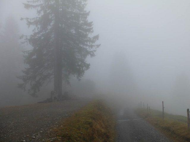 imberg_wanderweg_im_nebel